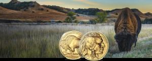 buy gold buffalo coins